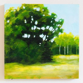 6x6 summer landscape painting, trees and meadow